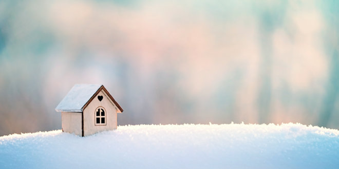 Property Newsletter: Christmas 2019
